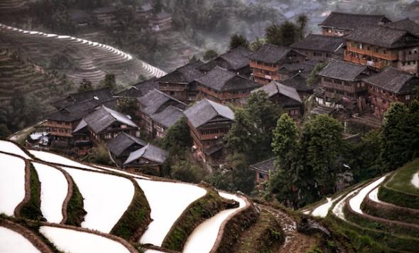 Los campos de arroz rodean y alimentan este típico poblado Chino. Foto de Christian Ortiz.