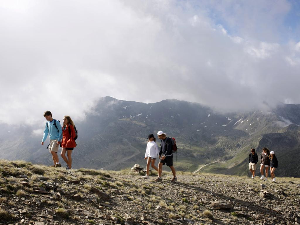 Familia Pirineos